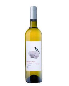 vi-blanc-boltana-temps-de-vins-igualada