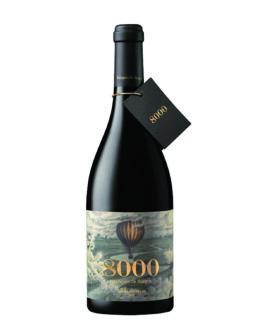 vi-negre-marqués-de-burgos-temps-de-vins-igualada