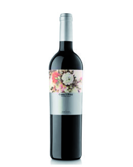 vi-negre-coca-i-fito-temps-de-vins-igualada