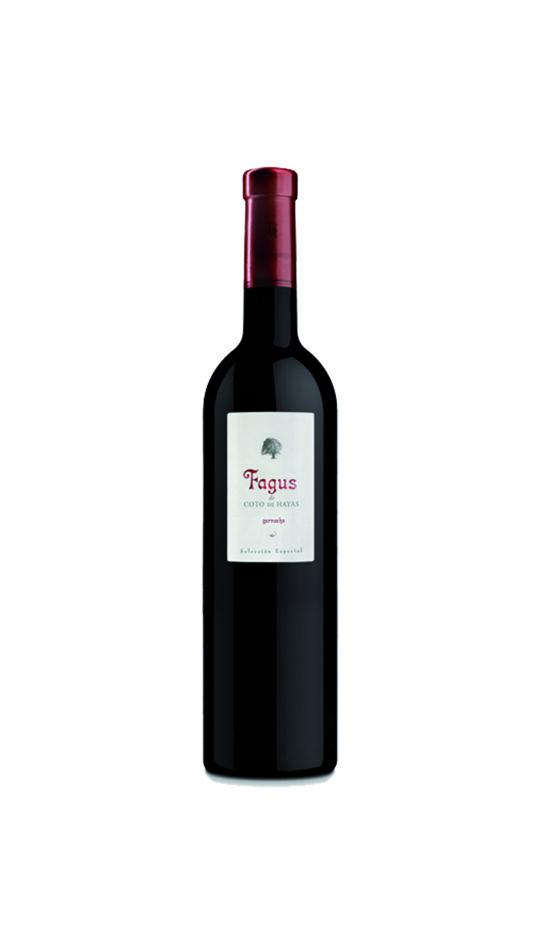 vi-negre-fagus-temps-de-vins-igualada