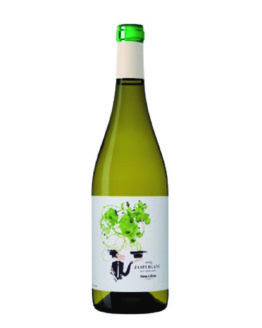 vi-blanc-jaspi-temps-de-vins-igualada