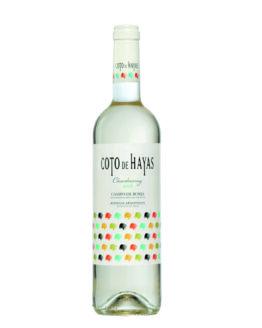 vi-blanc-coto-de-hayas-blanc-temps-de-vins-igualada
