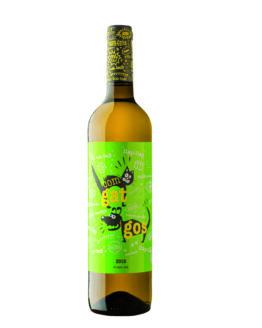 vi-blanc-com-gat-i-gos-temps-de-vins-igualada